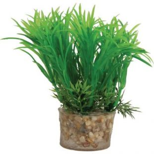 ZOLUX Akvariumų augalas Plastic Plants On Gravels 13 cm