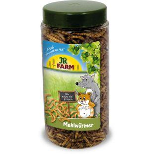 JR FARM Mealworms tub graužikų pašaro papildas 70 g