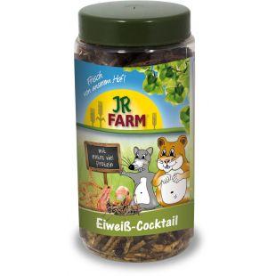 JR FARM protein cocktail box graužikų pašaro papildas 75 g