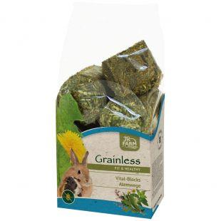 JR FARM Grainless Health Vital-Blocks Airways graužikų pašaras 300 g