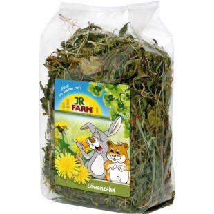 JR FARM Dandelion graužikų pašaro papildas 500 g