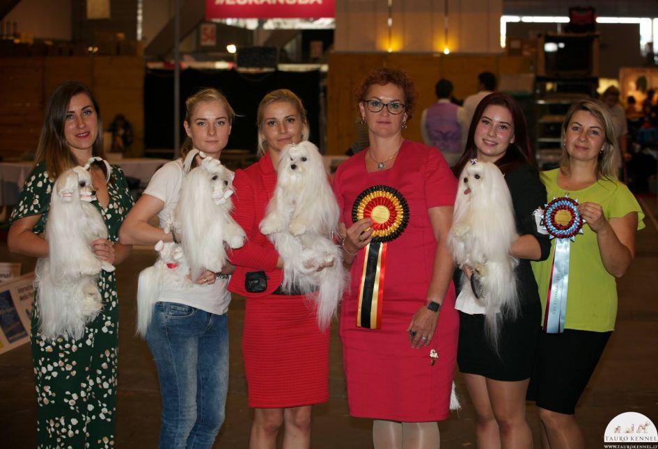 Lietuvos veisėjų šunys šalies vardą garsina Europoje