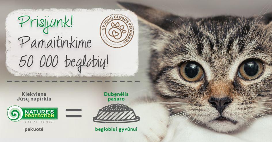 KIKA ir geranoriškų žmonių siekis – pamaitinti 50 000 beglobių gyvūnų