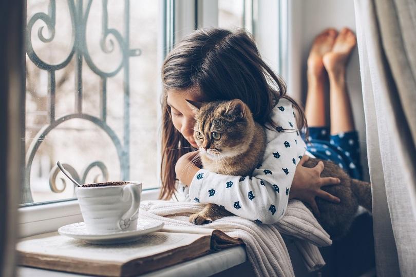 Ekspertai pataria: 3 pagrindinės taisyklės, padėsiančios įpratinti katę atlikti reikalus dėžutėje