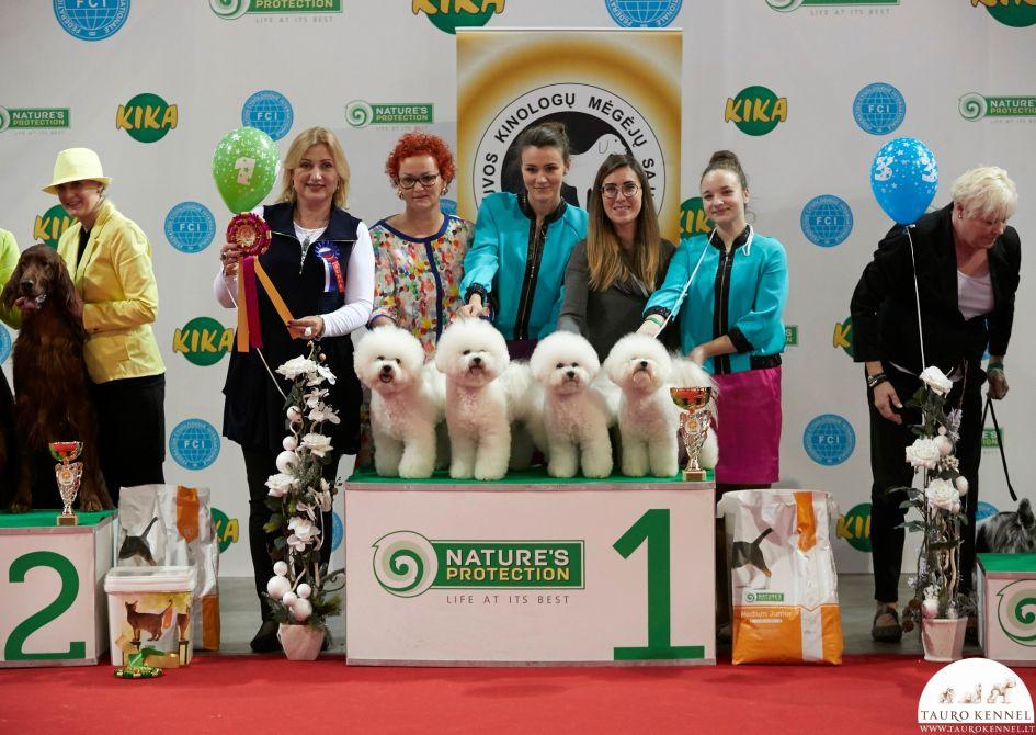 Parodose aukščiausi titulai išdalinti gražiausiems šunims