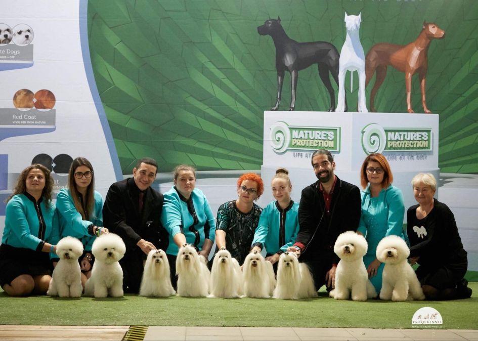 Europos šunų parodoje – 3 čempionai iš Lietuvos