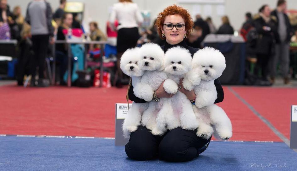 Parodose išdalinti apdovanojimai gražiausiems šunims