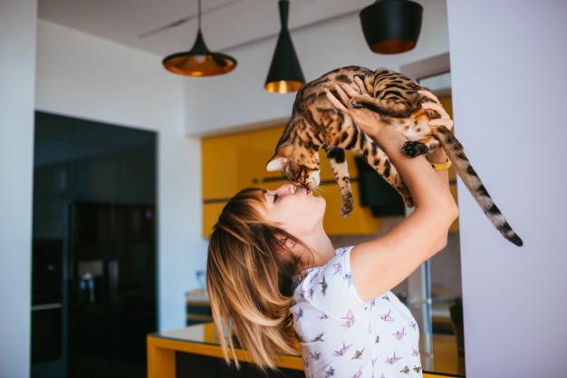 Raktas į sterilizuotų kačių sveikatą – tinkamos formulės pašaras