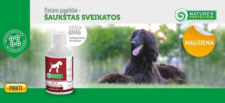 papildai šunų širdies sveikatai)